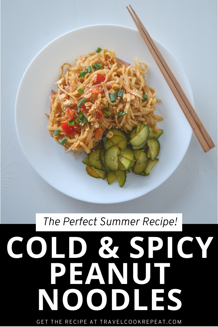 Spicy Peanut Noodles - Served Cold for Summer