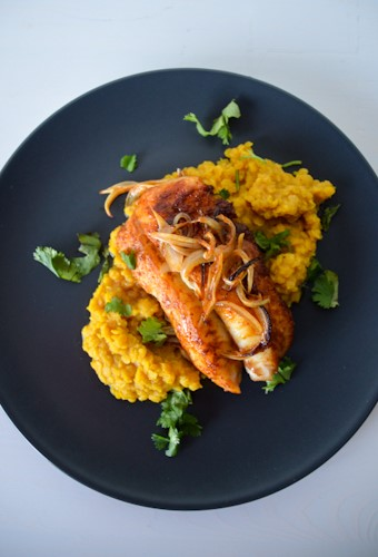 Cod cooked in a red curry paste marinade on top yellow colored red lentils, topped with onions and showered with cilantro