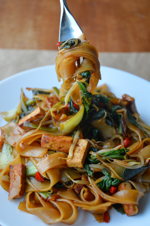 A plate of vegetarian drunken noodles with tofu and bok choy - a fork is holding a tasty bite