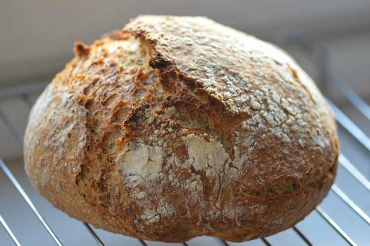 A beautiful loaf of crusty no-knead bread (made in a Dutch oven) resting on a cooling rack