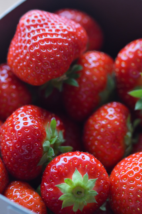 Close up of beautiful strawberries - perfect for a strawberry sando